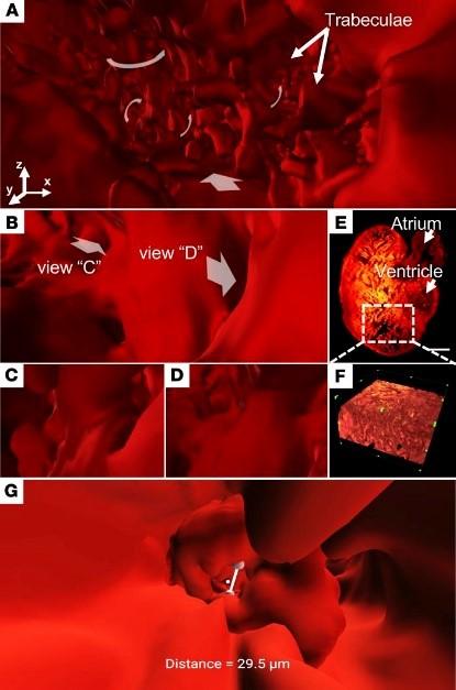 Laserglow Technologies | Industrial & Scientific Lasers